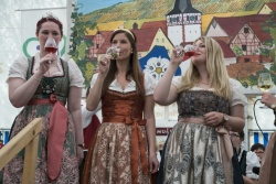41_Dertinger_Weinfest.jpg