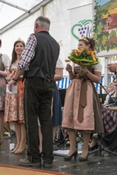 49_Dertinger_Weinfest.jpg